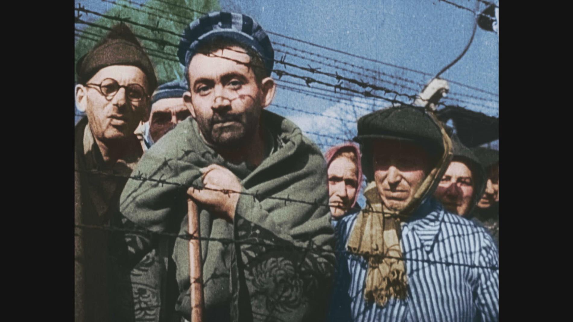 Auschwitz Untold in Colour